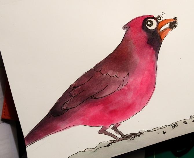 cardinal-sketch-1500px