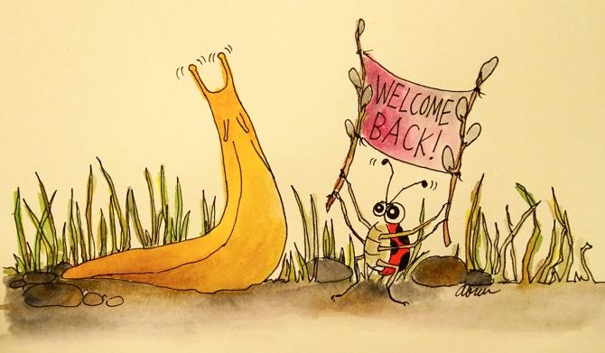 slug-summer