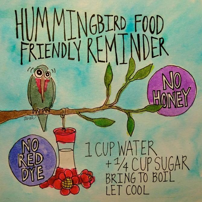 hummingbird-food-small