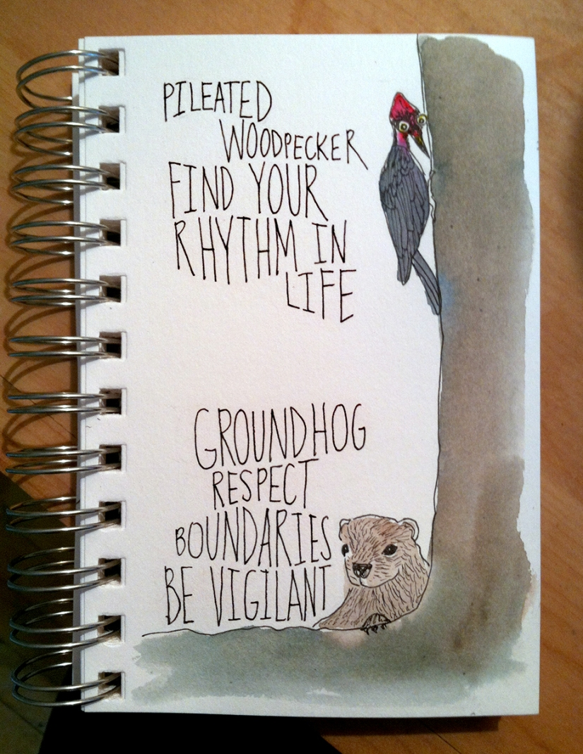 woodpecker-groundhog