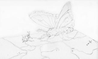 map-moth001