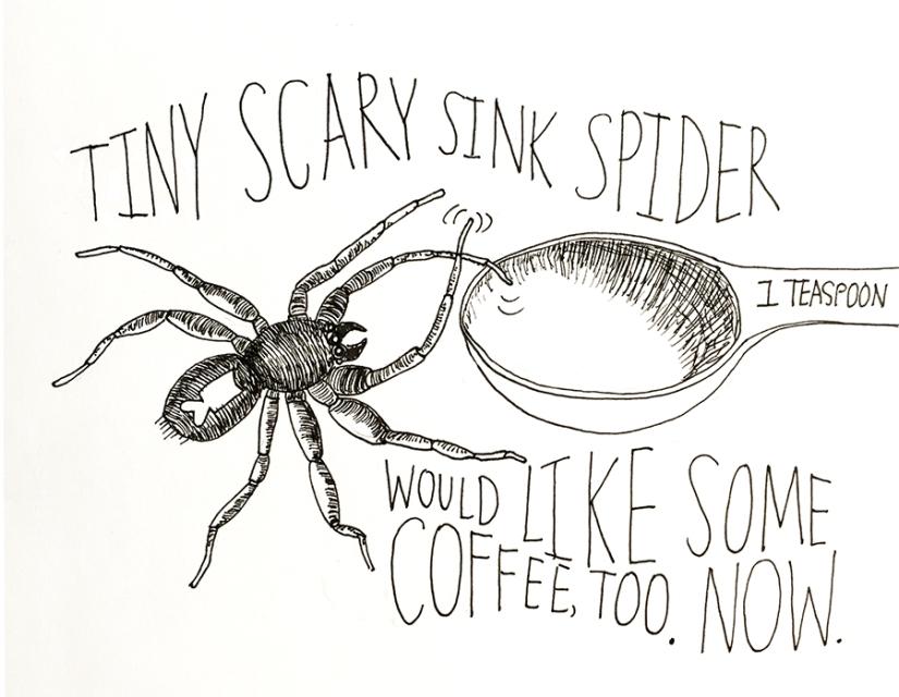 sink-spider